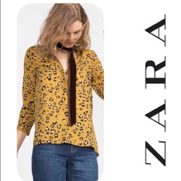 cdb4fcca55d9 Zara Tops   Basic Leopard Print Top Blogger Fave   Poshmark
